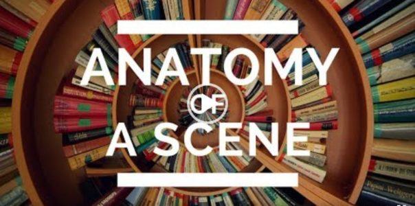 Anatomie scény